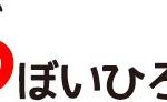 初個展開催! 11月3日(金)ー11月26日(日)